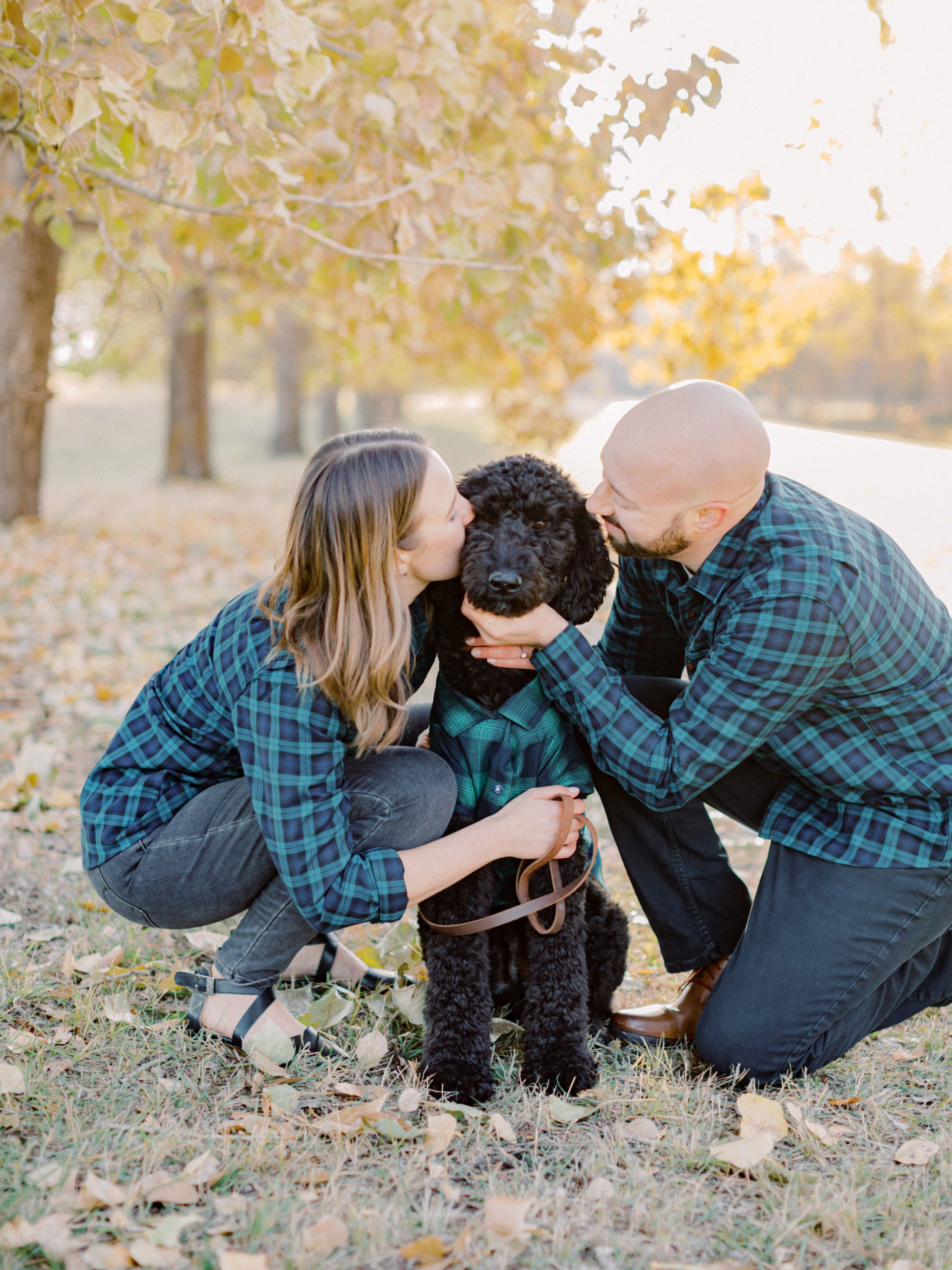 Dogs in engagement session